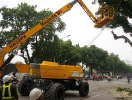 Dịch vụ cho thuê xe nâng người cắt tỉa cây xanh uy tín ở Hà Nội